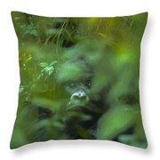 Mountain Gorilla Volcanoes National Park Rwanda Throw Pillow
