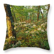 Mountain Laurel Blooming In A Hyner Throw Pillow