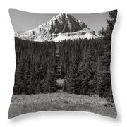 Mountain Peak Above The Tree Line Throw Pillow