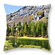 Mountain Pond Throw Pillow