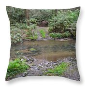 Mountain Road And Footbridge Throw Pillow