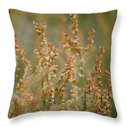 Mountain Sorrel Throw Pillow