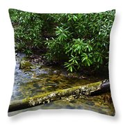 Mountain Stream And Rhododendron Throw Pillow