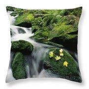 Mountain Stream Cascading Throw Pillow