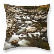 Mountain Stream In Autumn Throw Pillow
