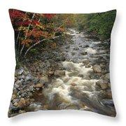 Mountain Stream In Autumn, White Throw Pillow