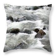 Mountain Stream Smokies Throw Pillow by Rich Franco