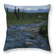 Mountain Stream With Cabin In Evergreen Throw Pillow