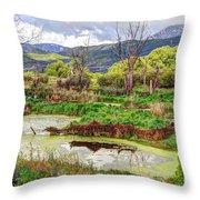 Mountain Valley Marsh - Hdr Throw Pillow