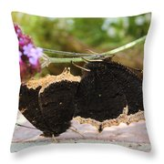 Mourning Cloak Butterfly Lovin' Throw Pillow