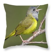 Mourning Warbler Oporornis Philadelphia Throw Pillow