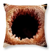 Mouse Bronchiole, Sem Throw Pillow