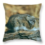 Mouse On A Log Throw Pillow