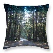 Moveonart 50milesanhourthroughtheforest Throw Pillow
