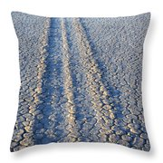 Moving And Grooving Throw Pillow