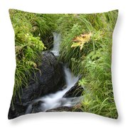 Moving Quick Throw Pillow