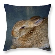 Mr Canelle Throw Pillow