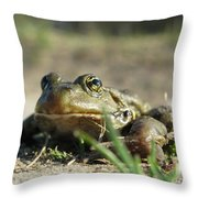 Mr. Charming Eyes Throw Pillow