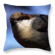 Mr. Finally Throw Pillow