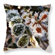 Mr Frost Wants World Peace Throw Pillow