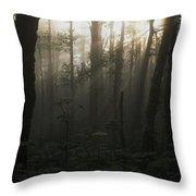 Mt. Hood National Forest Near Larch Throw Pillow