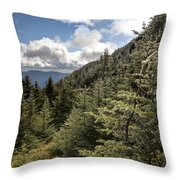 Mt Manfield Vermont 21 Throw Pillow