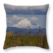 Mt Mclaughlin Springtime Throw Pillow