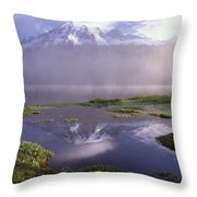 Mt Rainier An Active Volcano Encased Throw Pillow