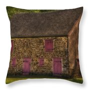 Mule Barn  Throw Pillow by Susan Candelario