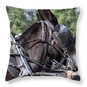 Mule Days - Benson - A Pair Of Aces - Mules Throw Pillow