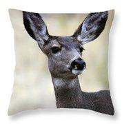 Mule Deer Doe Throw Pillow