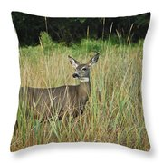 Mule Deer Winthrop Wa 9176 Throw Pillow