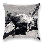 Mule Train Bw Throw Pillow