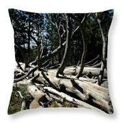 Mules Ear Timber Throw Pillow