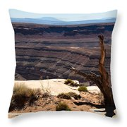 Muley Point Throw Pillow