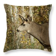 Mulie Buck 3 Throw Pillow