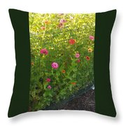 Multi-colored Flowers Throw Pillow