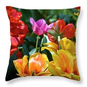 Multi-colored Tulips In Bloom Throw Pillow