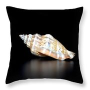 Multicolor Reflections Throw Pillow