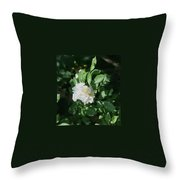 Multiflora Bouquet Throw Pillow