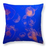 Multiple Jelly Fish Throw Pillow