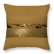 Mumbai In The Morning In December Throw Pillow