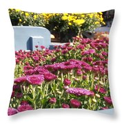 Mums At The Farm Stand Throw Pillow