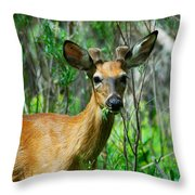 Munch Time Throw Pillow