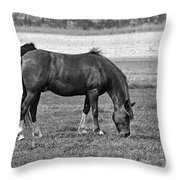 Munching Sweet Spring Grass II Throw Pillow