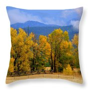 Murmur Of The Cottonwoods Throw Pillow