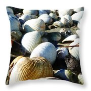Muscle Beach Throw Pillow