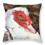 Muscovy Type II Throw Pillow