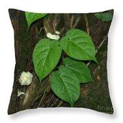Mushroom Between The Leaves Throw Pillow