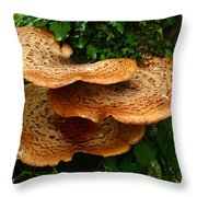 Mushroom Cluster Throw Pillow